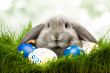 Easter Candy: Damned If You Do and Damned If YouDon't?