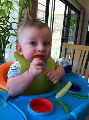 Food Smart Parents (And Even SmarterKids!)